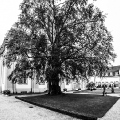 2016_Weilburg